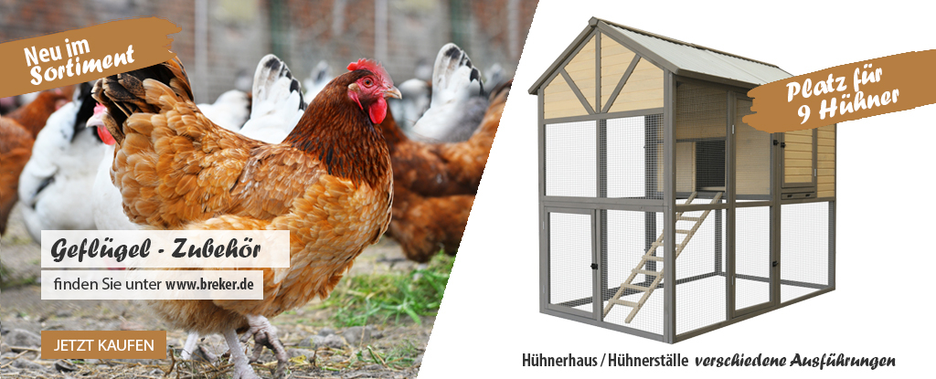 Hühner-/ Geflügel Zubehör
