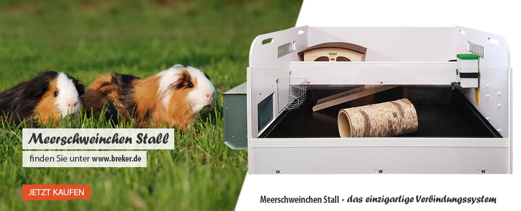 Meerscweinchen Stall bei www.breker.de